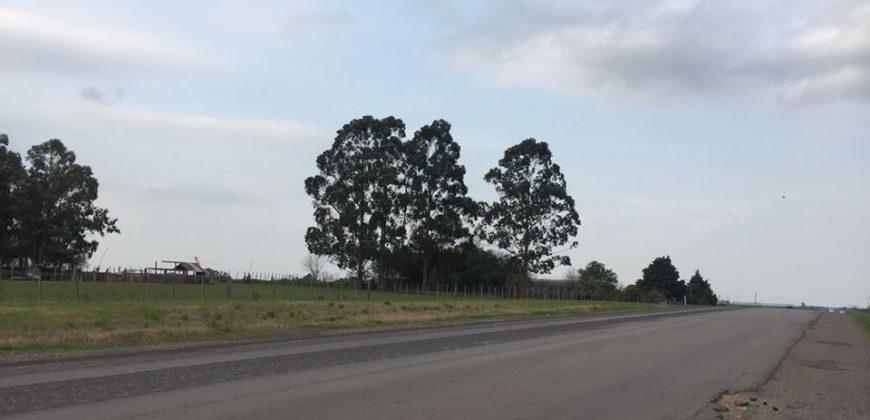CHACRA SOBRE RUTA NACIONAL N°12 A POCOS KMS DEL PUEBLO AGRACIADA