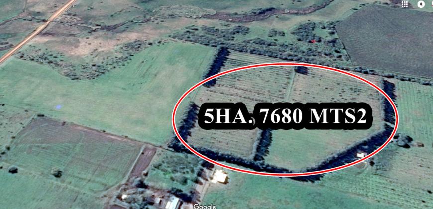 CHACRA DE 5 HA. Y 7680 MTS2 EN ZONA DE DESVIO DE CAMIONES-N.PALMIRA